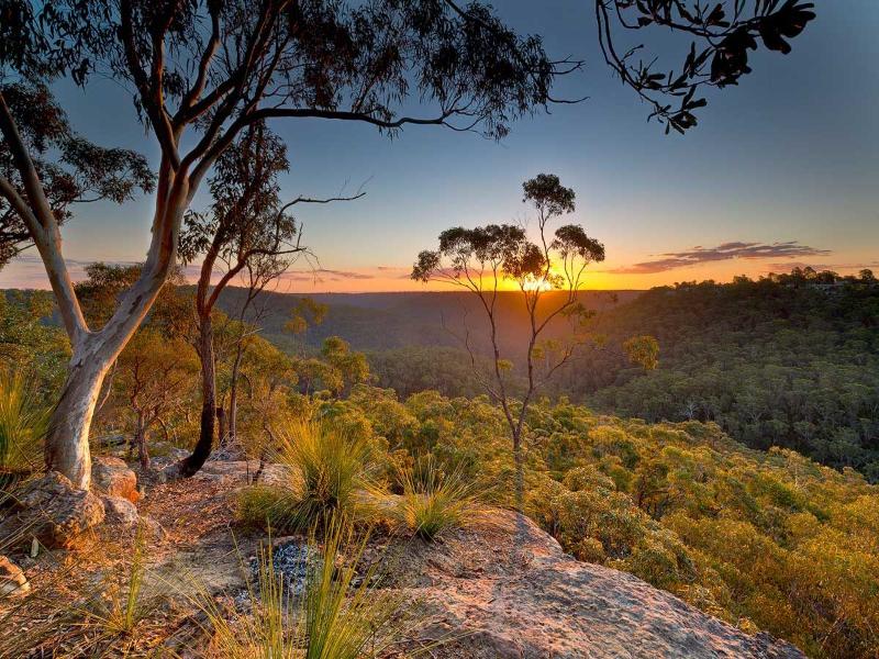 Berowa Valley National Park sunrise