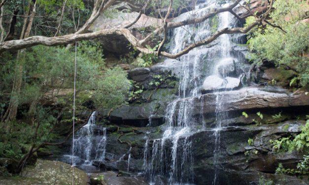 Brisbane Water National Park
